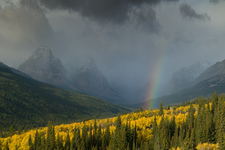 Rainbow, Glacier National Park